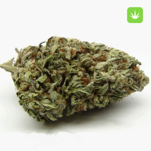BlackBerry-Kush-1—Cannabis-Avenue
